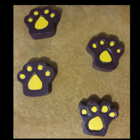 Tiger Paws wall decorations