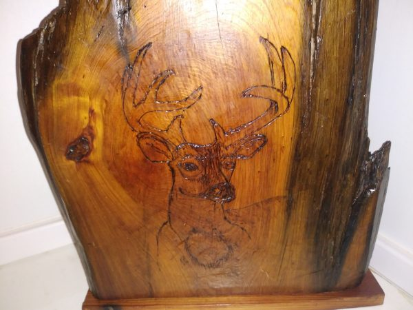 Closeup of deer on wood