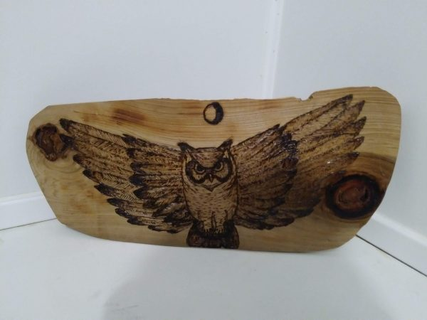 owl with wings spread woodburned plaque